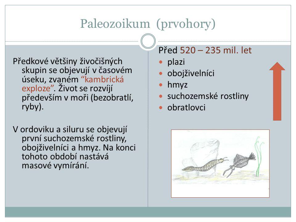 """Paleozoikum (prvohory) Předkové většiny živočišných skupin se objevují v časovém úseku, zvaném """"kambrická exploze"""". Život se rozvíjí především v moři"""