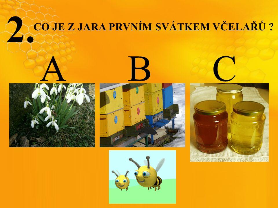 2. A B C CO JE Z JARA PRVNÍM SVÁTKEM VČELAŘŮ ?