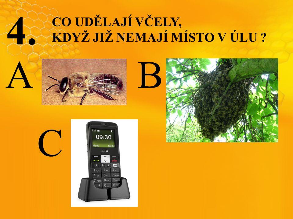 4. CO UDĚLAJÍ VČELY, KDYŽ JIŽ NEMAJÍ MÍSTO V ÚLU ? C BA