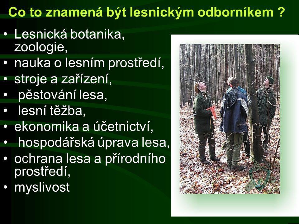 Kdo je lesní pedagog ? Vzděláním a povoláním lesník Absolvent kurzu lesní pedagogiky Odborník s otevřeným srdcem