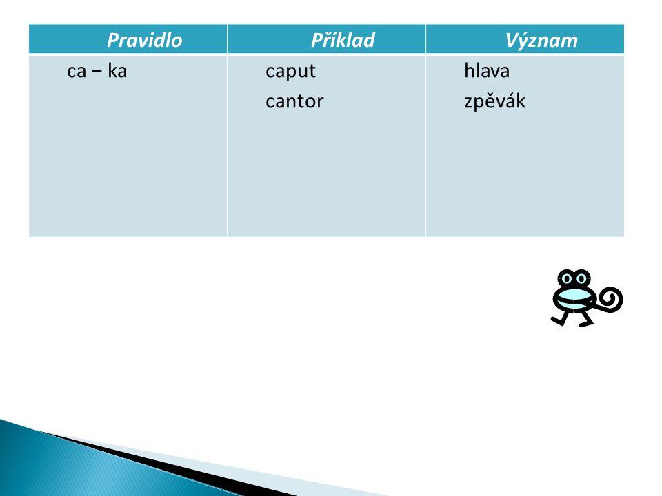 PravidloPříkladVýznam ca − kacaput cantor hlava zpěvák