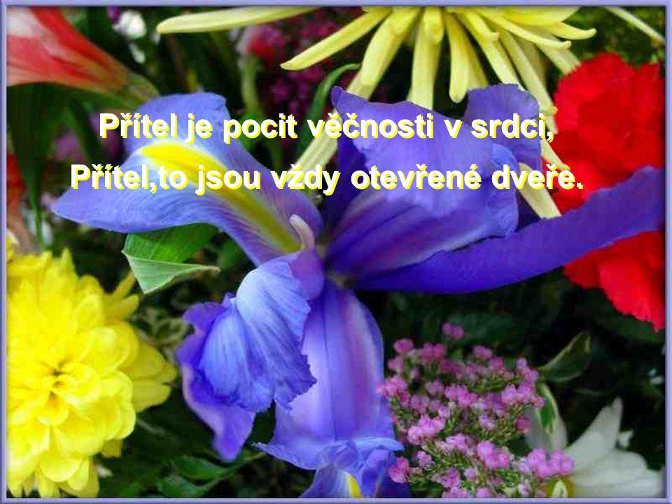 Přítel je pocit věčnosti v srdci, Přítel,to jsou vždy otevřené dveře.