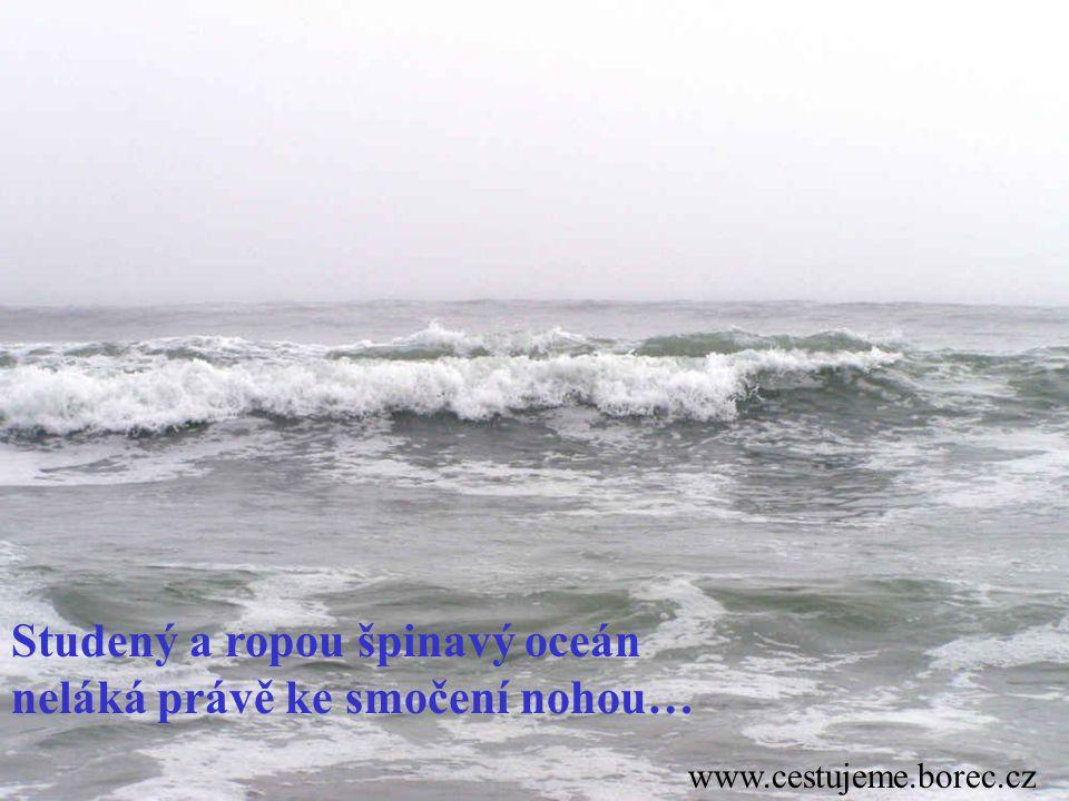 Studený a ropou špinavý oceán neláká právě ke smočení nohou…