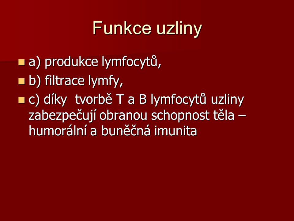 Funkce uzliny a) produkce lymfocytů, a) produkce lymfocytů, b) filtrace lymfy, b) filtrace lymfy, c) díky tvorbě T a B lymfocytů uzliny zabezpečují obranou schopnost těla – humorální a buněčná imunita c) díky tvorbě T a B lymfocytů uzliny zabezpečují obranou schopnost těla – humorální a buněčná imunita
