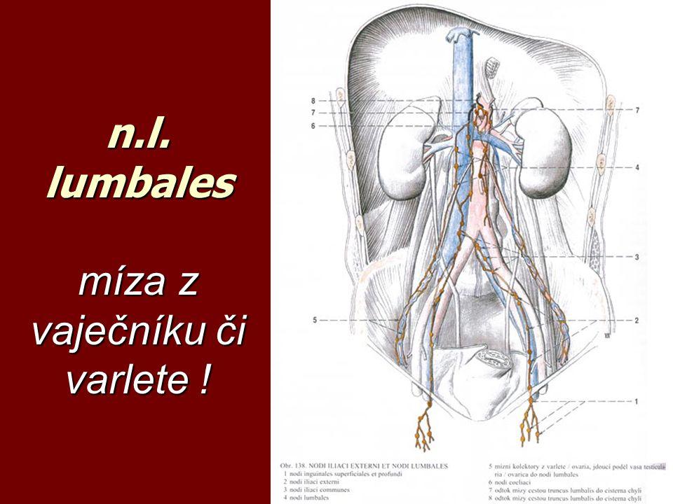 n.l. lumbales míza z vaječníku či varlete !