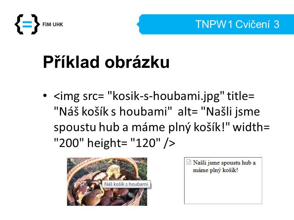 TNPW1 Cvičení 3 Příklad obrázku