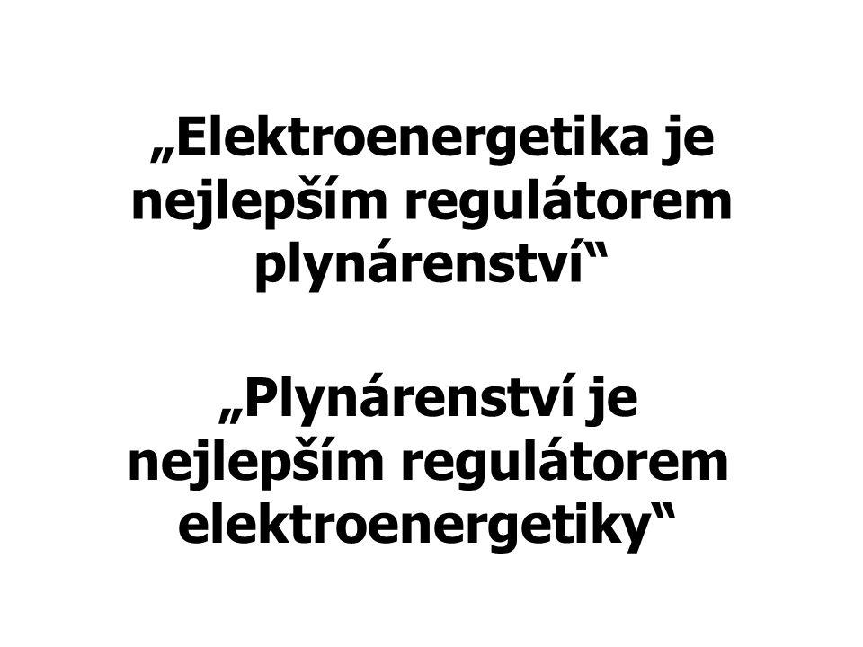 """Elektroenergetika je nejlepším regulátorem plynárenství"" ""Plynárenství je nejlepším regulátorem elektroenergetiky"""