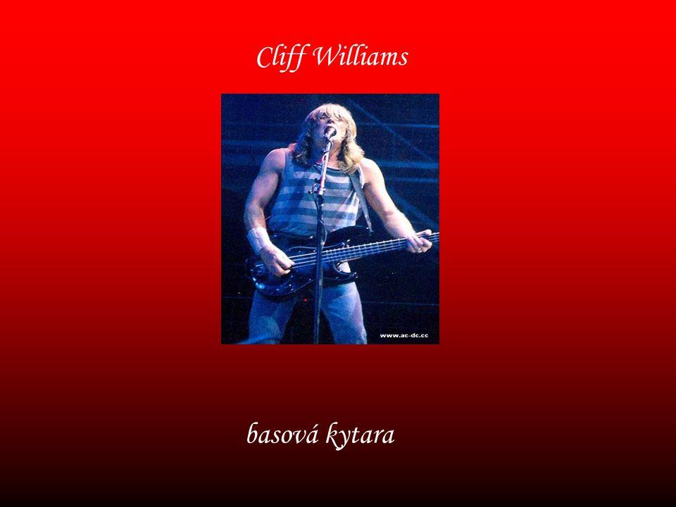 Cliff Williams basová kytara