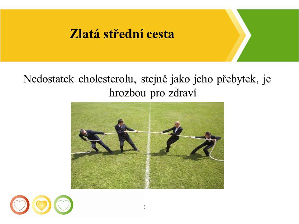 12 Zlatá střední cesta Nedostatek cholesterolu, stejně jako jeho přebytek, je hrozbou pro zdraví