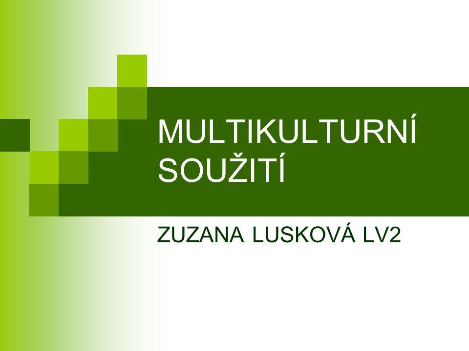 MULTIKULTURNÍ SOUŽITÍ ZUZANA LUSKOVÁ LV2
