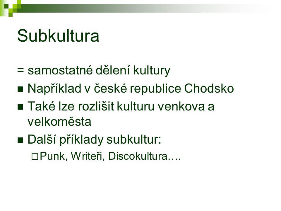Subkultura = samostatné dělení kultury Například v české republice Chodsko Také lze rozlišit kulturu venkova a velkoměsta Další příklady subkultur:  Punk, Writeři, Discokultura….