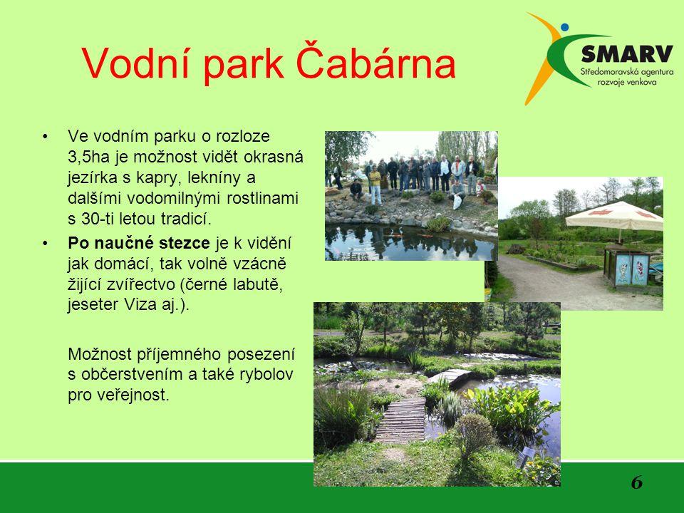 6 Vodní park Čabárna Ve vodním parku o rozloze 3,5ha je možnost vidět okrasná jezírka s kapry, lekníny a dalšími vodomilnými rostlinami s 30-ti letou