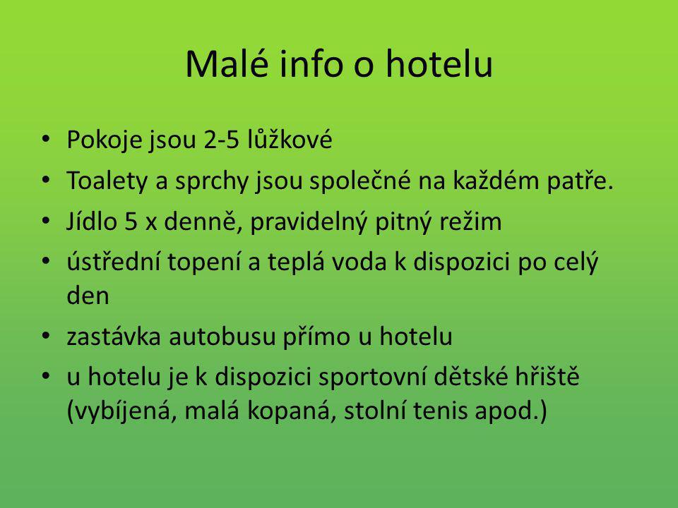 Malé info o hotelu Pokoje jsou 2-5 lůžkové Toalety a sprchy jsou společné na každém patře. Jídlo 5 x denně, pravidelný pitný režim ústřední topení a t
