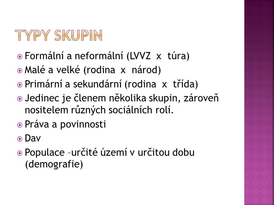  Formální a neformální (LVVZ x túra)  Malé a velké (rodina x národ)  Primární a sekundární (rodina x třída)  Jedinec je členem několika skupin, zá