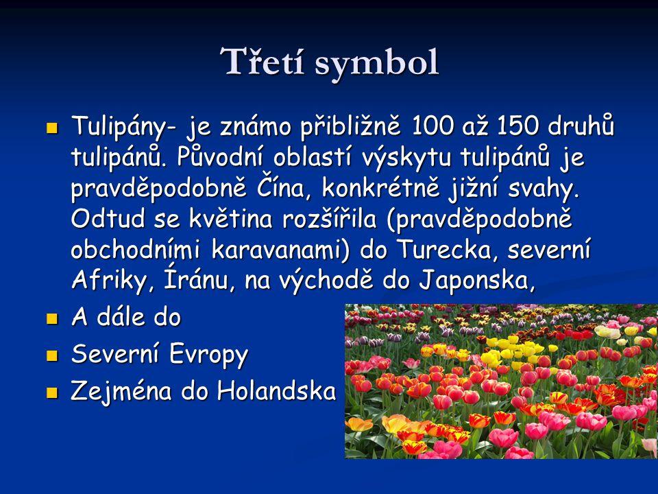 Třetí symbol Tulipány- je známo přibližně 100 až 150 druhů tulipánů. Původní oblastí výskytu tulipánů je pravděpodobně Čína, konkrétně jižní svahy. Od