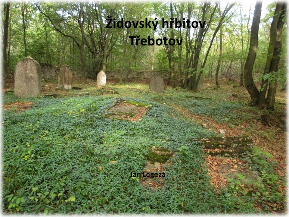 Židovský hřbitov Třebotov Jan Legeza