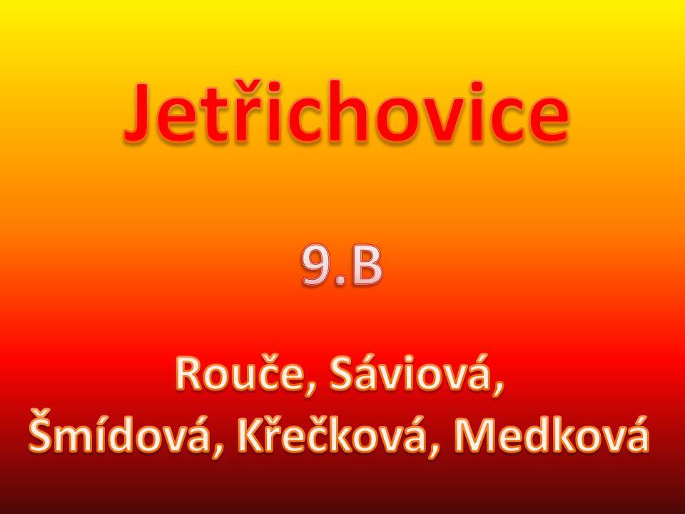 Jetřichovice jsou obec v okrese Děčín. Ke dni 3. 7. 2006 zde žilo 417 obyvatel.