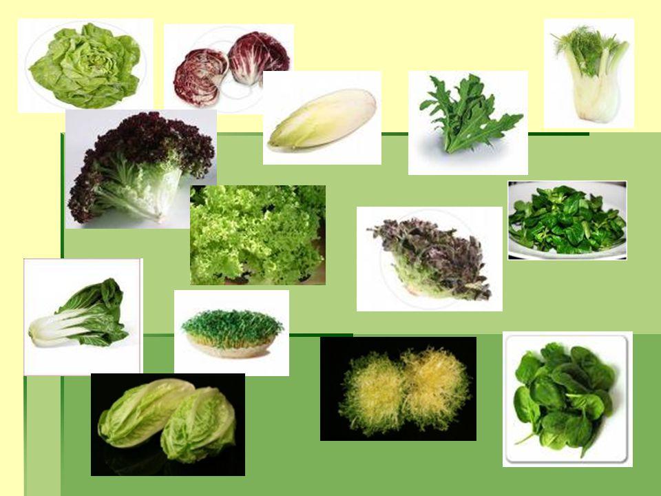 KVĚTÁK – alias KARFIOL  V ČR VELMI oblíbený  Před úpravou ho máčíme a pak propláchneme  Upravuje se podobně jako brokolice  Nejčastěji smažený nebo jako mozeček  Můžeme z něj připravovat nákypy,  nebo např.