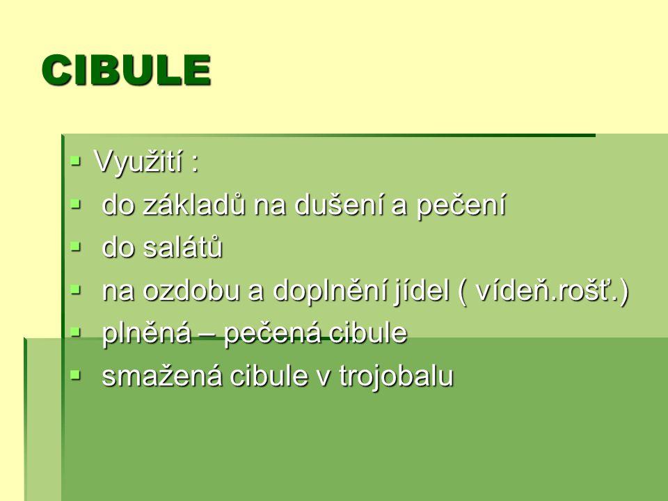 CIBULE  Využití :  do základů na dušení a pečení  do salátů  na ozdobu a doplnění jídel ( vídeň.rošť.)  plněná – pečená cibule  smažená cibule v trojobalu