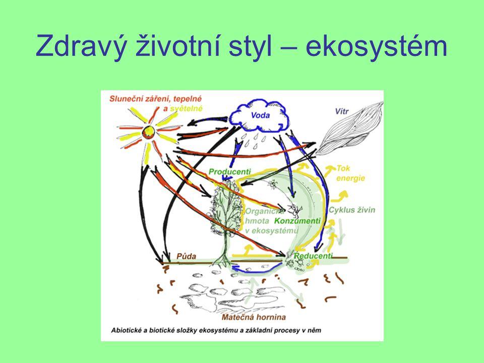 Zdravý životní styl – ekosystém