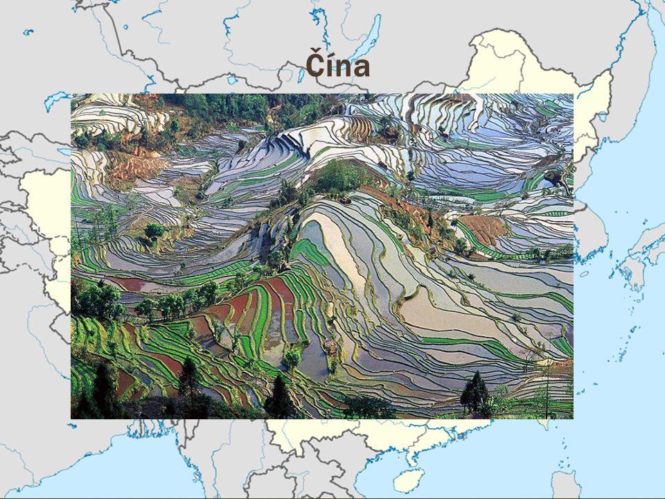 Wuhan je hlavní město provincie Hubei v centrální Číně a žije v něm 9.4 milionu obyvatel