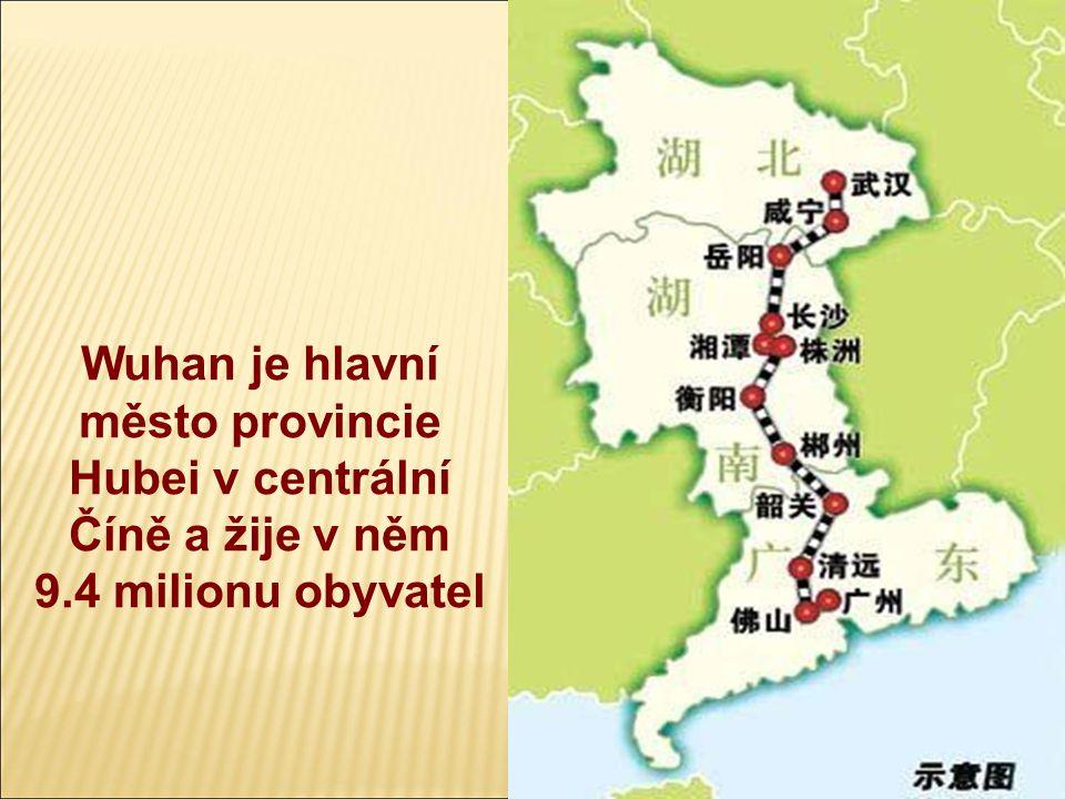 Město Wuhan  Město Wuhan je důležitou křižovatkou železnice Peking-Guangzhou a vodní cesty řeky Jang-Tze-Tiang  Jeho průmyslový základ tvoří metalurgie, těžké strojírenství, lehký průmysl, průmysl farmaceutický, chemický, elektrotechnický a průmysl stavebních hmot  Dále špičkové sektory včetně optiky vláken, biologického inženýrství, laserů, mikroelektroniky a nových materiálů