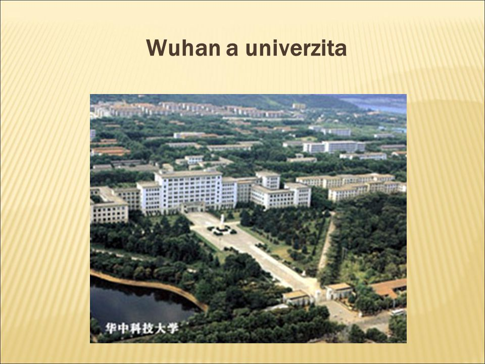 Wuhan a univerzita