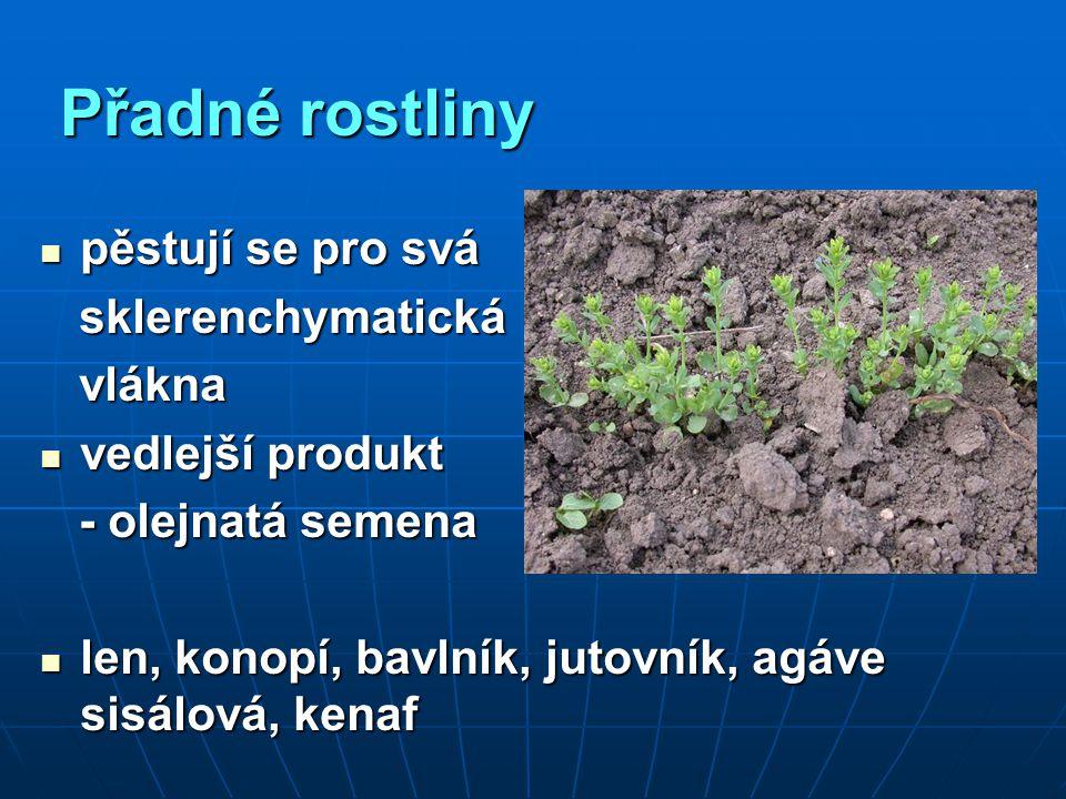 Přadné rostliny pěstují se pro svá pěstují se pro svá sklerenchymatická sklerenchymatická vlákna vlákna vedlejší produkt vedlejší produkt - olejnatá s