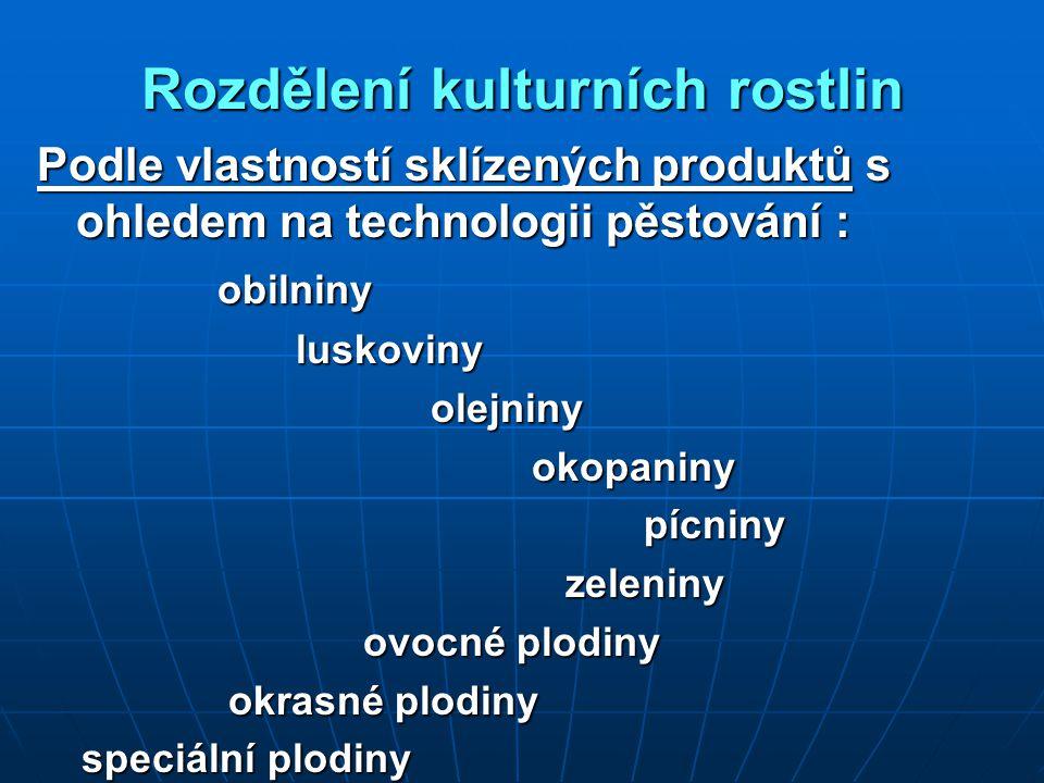 Rozdělení kulturních rostlin Podle vlastností sklízených produktů s ohledem na technologii pěstování : obilniny obilniny luskoviny luskoviny olejniny