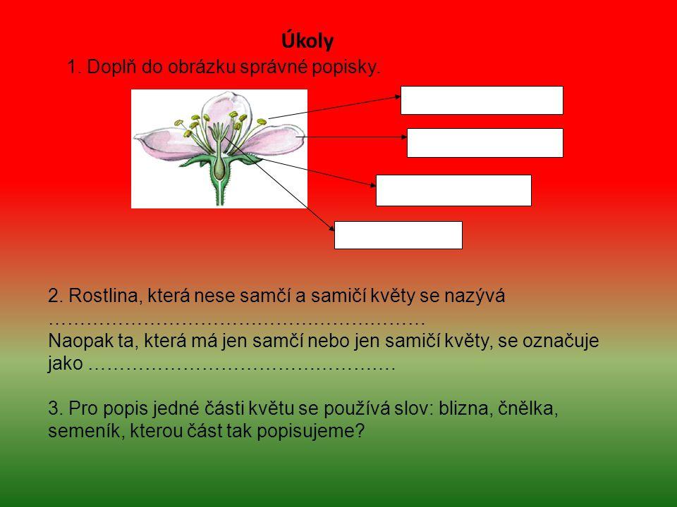 1. Doplň do obrázku správné popisky. 2. Rostlina, která nese samčí a samičí květy se nazývá …………………………………………………… Naopak ta, která má jen samčí nebo je