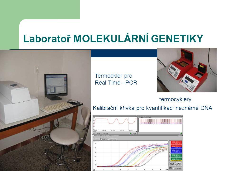 Laboratoř MOLEKULÁRNÍ GENETIKY Termockler pro Real Time - PCR termocyklery Kalibrační křivka pro kvantifikaci neznámé DNA