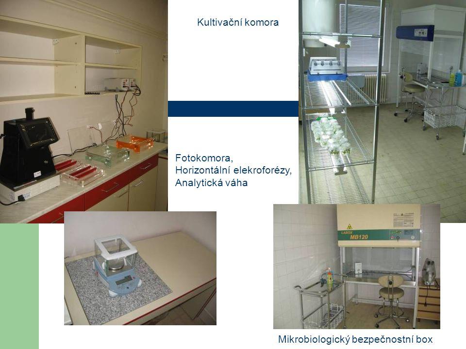 Mikrobiologický bezpečnostní box Fotokomora, Horizontální elekroforézy, Analytická váha Kultivační komora