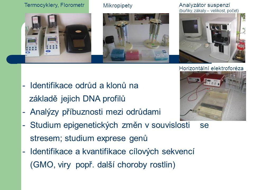 -Identifikace odrůd a klonů na základě jejich DNA profilů -Analýzy příbuznosti mezi odrůdami -Studium epigenetických změn v souvislosti se stresem; st