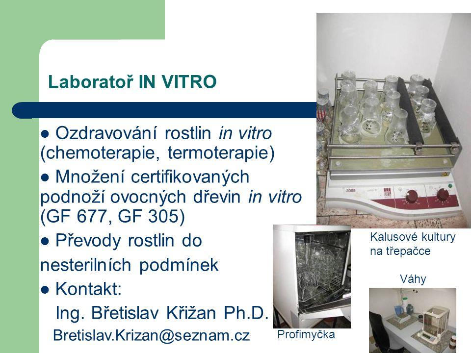 Laboratoř IN VITRO Ozdravování rostlin in vitro (chemoterapie, termoterapie) Množení certifikovaných podnoží ovocných dřevin in vitro (GF 677, GF 305)
