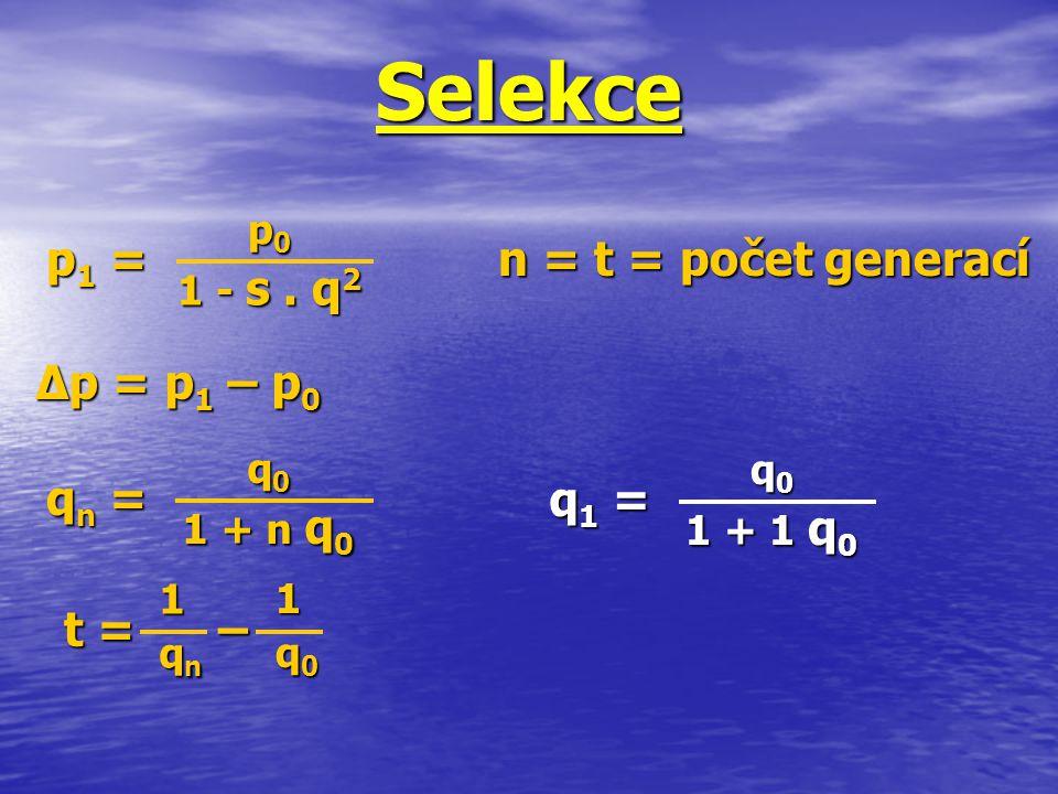 Selekce1 11qnqn11qnqn p1 =p1 =p1 =p1 = ∆p = p 1 – p 0 qn =qn =qn =qn = t = – p 0 1 - s. q 2 q 0 1 + n q 0 1 11q0q011q0q0 q1 =q1 =q1 =q1 = q 0 1 + 1 q