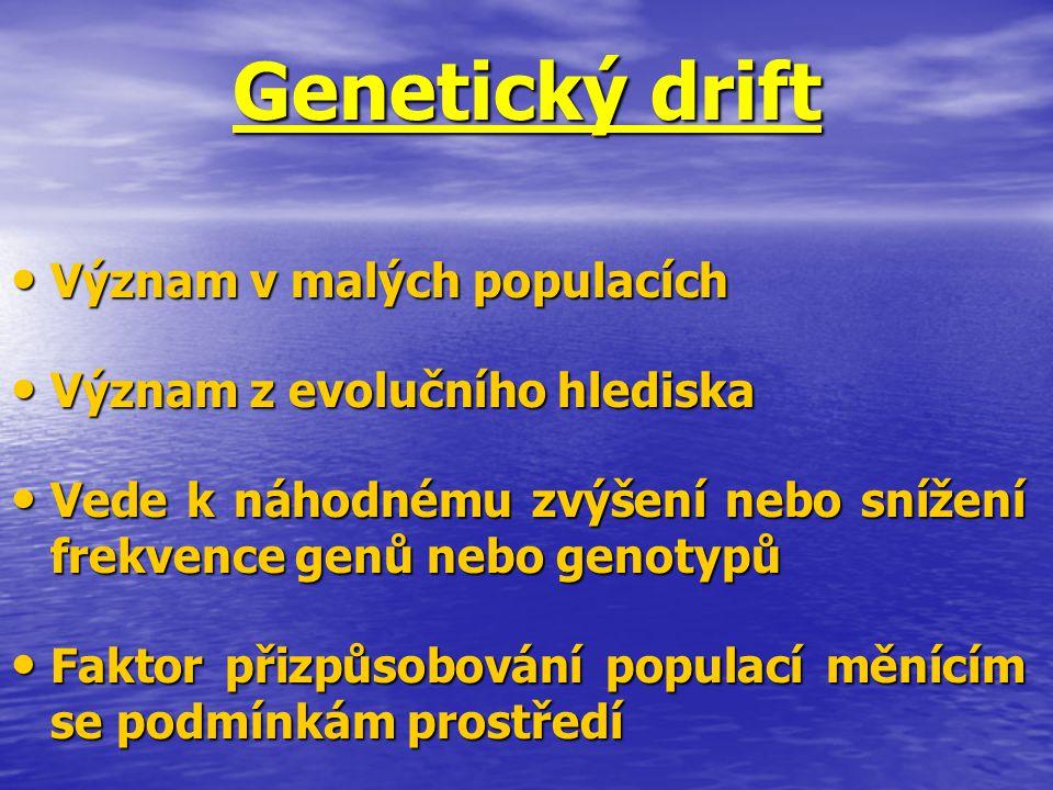 Genetický drift Význam v malých populacích Význam v malých populacích Význam z evolučního hlediska Význam z evolučního hlediska Vede k náhodnému zvýše