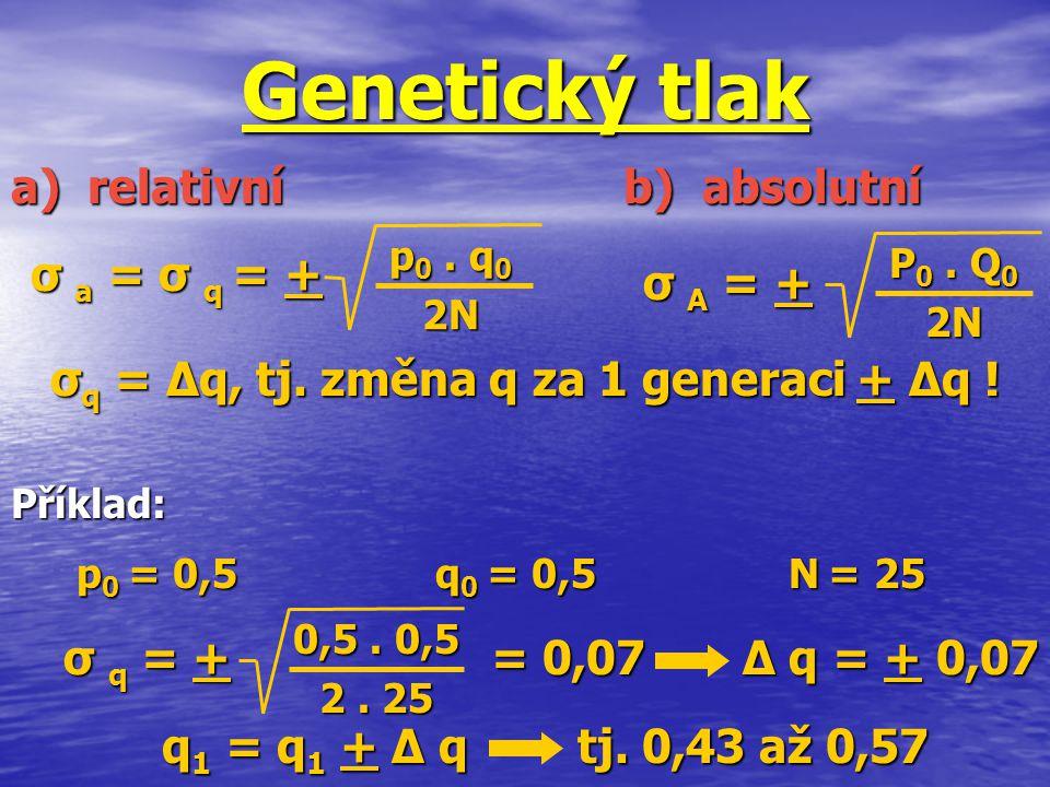 Genetický tlak σ a = σ q = + σ A = + a) relativní b) absolutní σ q = ∆q, tj. změna q za 1 generaci + ∆q ! p 0. q 0 2N P 0. Q 0 2N p 0 = 0,5 q 0 = 0,5