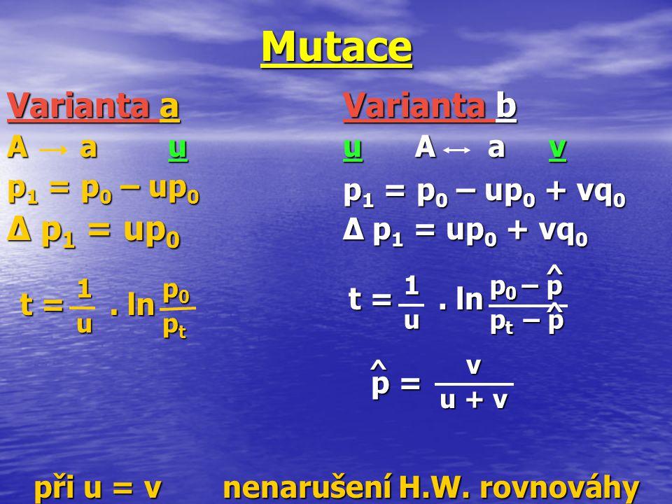 1 p 0 1 p 0 u p t u p t Varianta a A a u p 1 = p 0 – up 0 ∆ p 1 = up 0 Mutace při u = v nenarušení H.W. rovnováhy t =. ln Varianta b u A a v p 1 = p 0