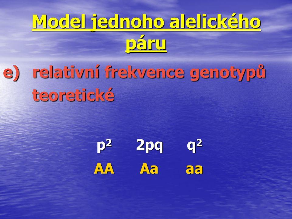 Model jednoho alelického páru e)relativní frekvence genotypů teoretické p2p2p2p22pq q2q2q2q2 AAAaaa