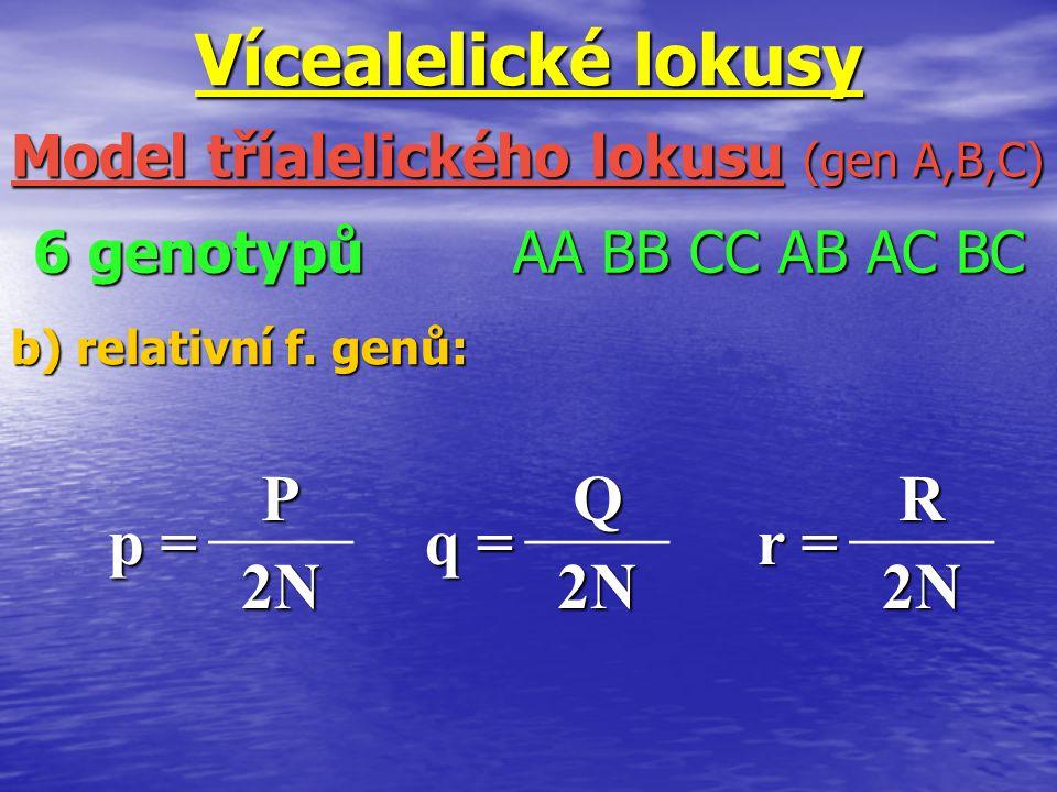 Vícealelické lokusy b) relativní f. genů: Model tříalelického lokusu (gen A,B,C) 6 genotypů AA BB CC AB AC BC p =p =p =p = P 2N2N2N2N q =q =q =q =Q 2N