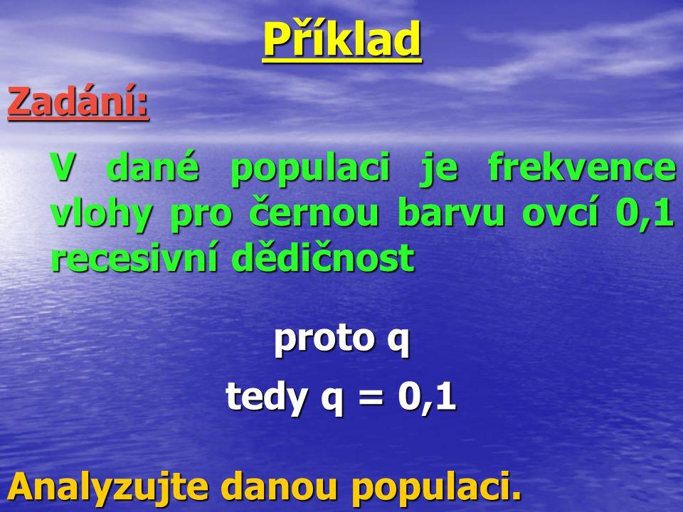 Příklad proto q Zadání: V dané populaci je frekvence vlohy pro černou barvu ovcí 0,1 recesivní dědičnost tedy q = 0,1 Analyzujte danou populaci.