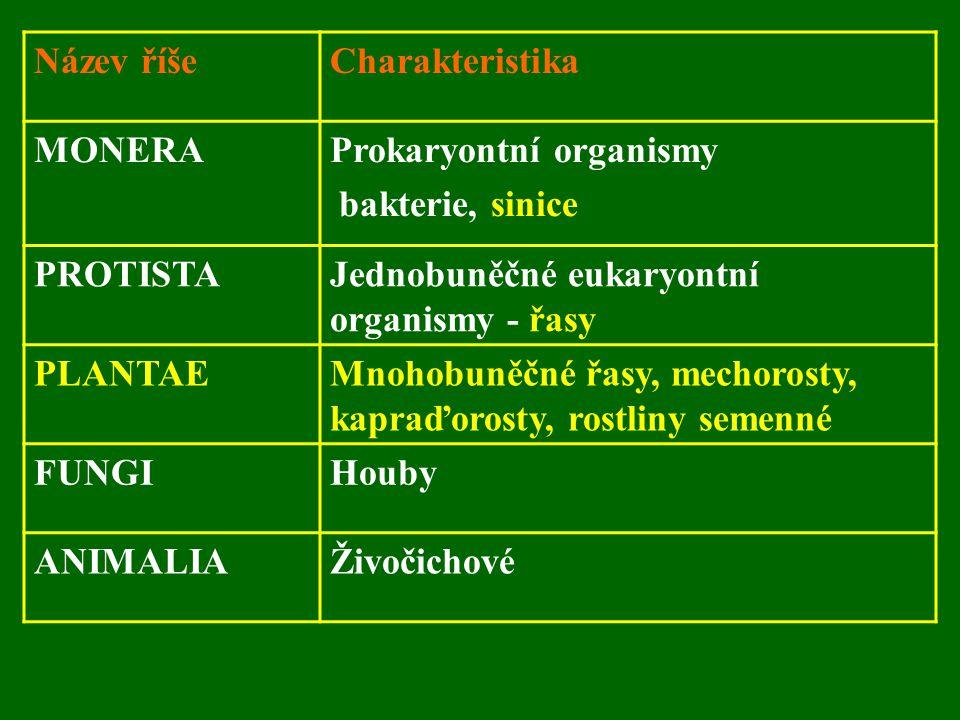 Název říšeCharakteristika MONERAProkaryontní organismy bakterie, sinice PROTISTAJednobuněčné eukaryontní organismy - řasy PLANTAEMnohobuněčné řasy, mechorosty, kapraďorosty, rostliny semenné FUNGIHouby ANIMALIAŽivočichové