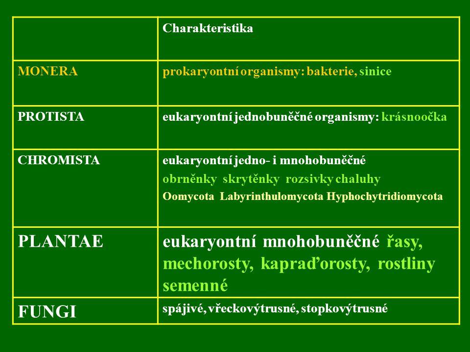 Charakteristika MONERAprokaryontní organismy: bakterie, sinice PROTISTAeukaryontní jednobuněčné organismy: krásnoočka CHROMISTAeukaryontní jedno- i mnohobuněčné obrněnky skrytěnky rozsivky chaluhy Oomycota Labyrinthulomycota Hyphochytridiomycota PLANTAEeukaryontní mnohobuněčné řasy, mechorosty, kapraďorosty, rostliny semenné FUNGI spájivé, vřeckovýtrusné, stopkovýtrusné