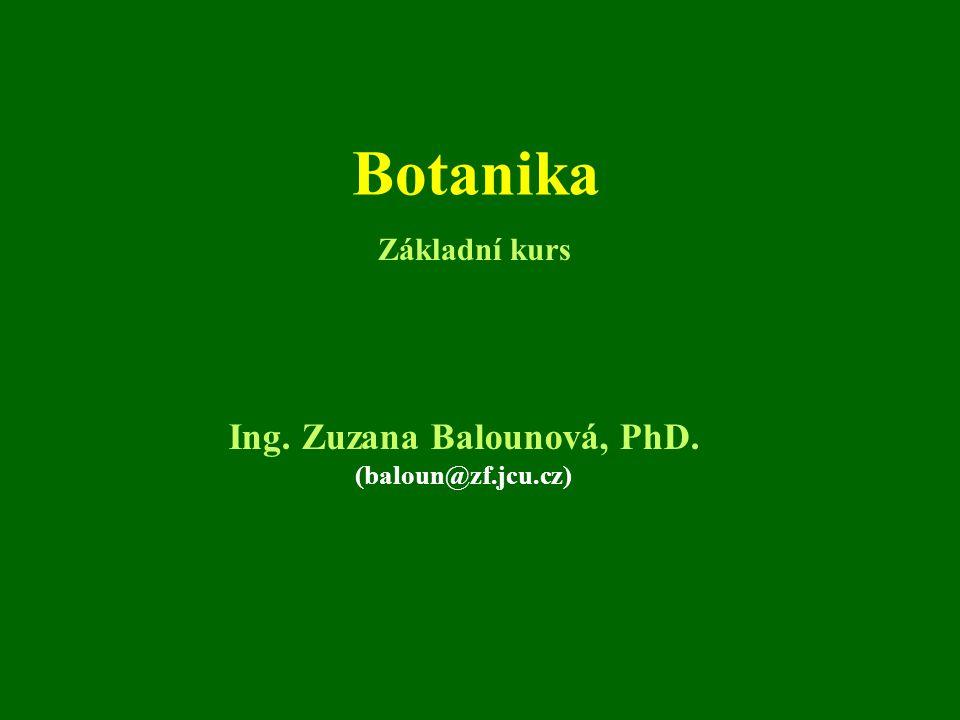 Botanika Ing. Zuzana Balounová, PhD. (baloun@zf.jcu.cz) Základní kurs