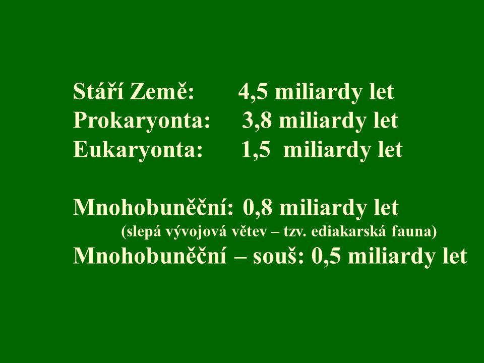 Stáří Země: 4,5 miliardy let Prokaryonta: 3,8 miliardy let Eukaryonta: 1,5 miliardy let Mnohobuněční: 0,8 miliardy let (slepá vývojová větev – tzv. ed