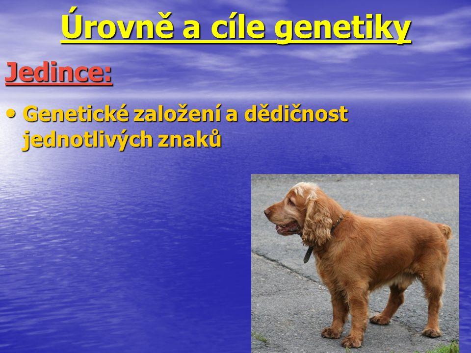 Úrovně a cíle genetiky Genetické založení a dědičnost jednotlivých znaků Genetické založení a dědičnost jednotlivých znaků Jedince: