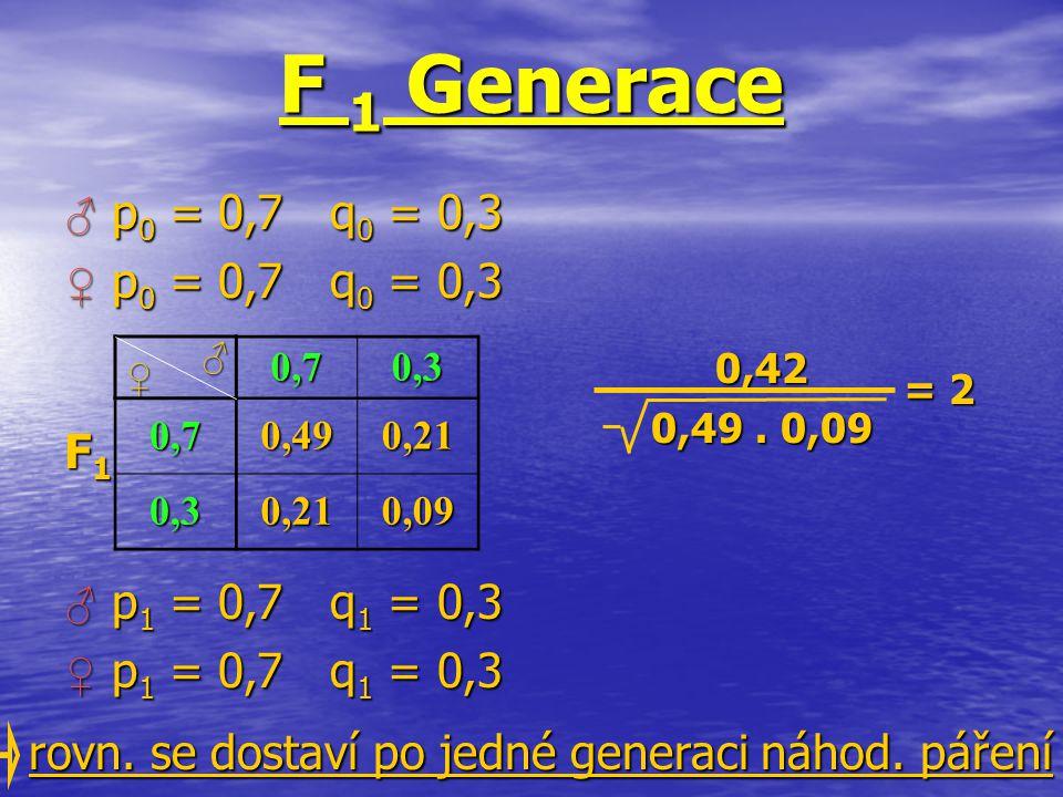 0,70,3 0,70,490,21 0,30,210,09 ♀ ♂ 0,42 0,49. 0,09 = 2 rovn. se dostaví po jedné generaci náhod. páření F1F1F1F1 F 1 Generace ♂ p 0 = 0,7 q 0 = 0,3 ♂
