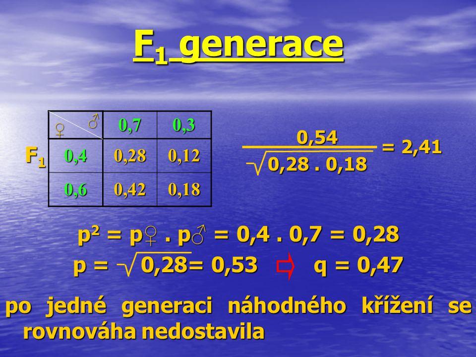 F 1 generace 0,70,3 0,40,280,12 0,60,420,18 ♀ ♂ 0,54 0,28. 0,18 = 2,41 F1F1F1F1 po jedné generaci náhodného křížení se rovnováha nedostavila p 2 = p ♀