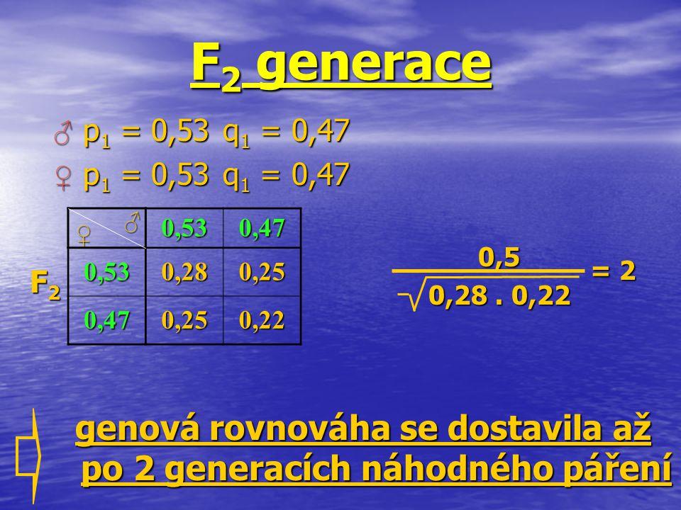 F 2 generace 0,530,47 0,530,280,25 0,470,250,22 ♀ ♂ 0,5 0,28. 0,22 = 2 genová rovnováha se dostavila až po 2 generacích náhodného páření F2F2F2F2 ♂ p