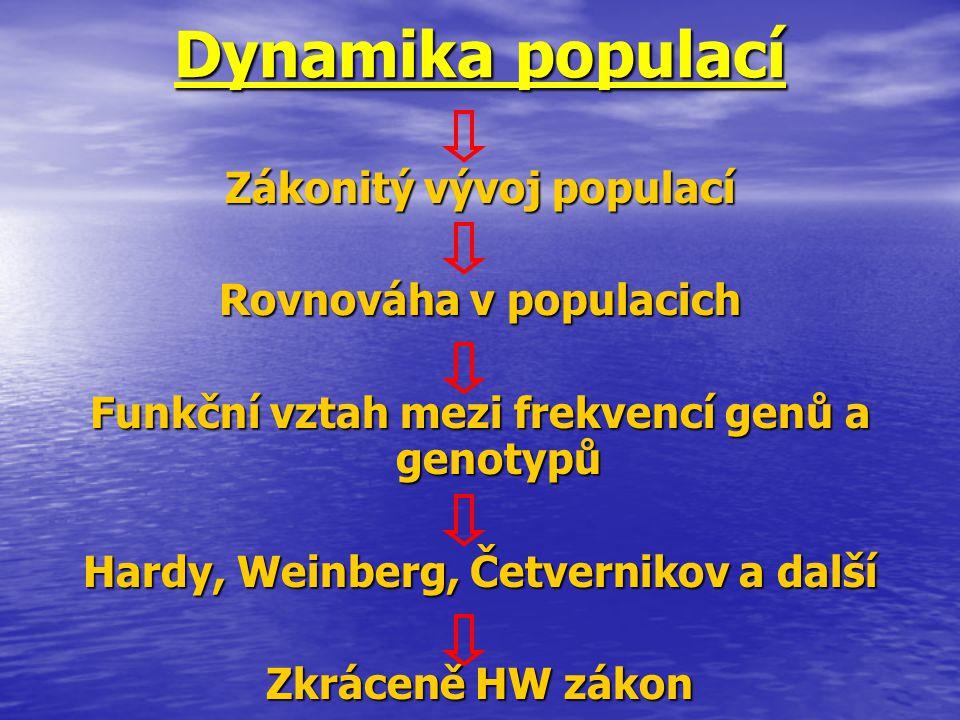Dynamika populací Zákonitý vývoj populací Rovnováha v populacich Funkční vztah mezi frekvencí genů a genotypů Hardy, Weinberg, Četvernikov a další Zkr